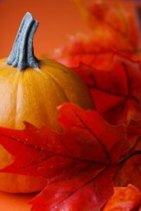 PumpkinAndLeaf